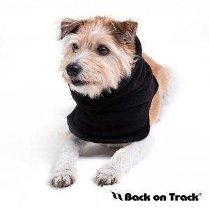 Back On Track Dog Loop Front