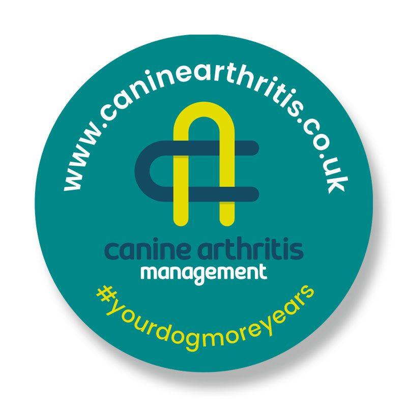 CAM Logo Car Sticker 2