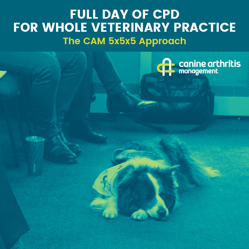 CPD FULL DAY 5x5x5 Approach