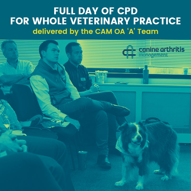 CPD FULL DAY Practice The OA A Team