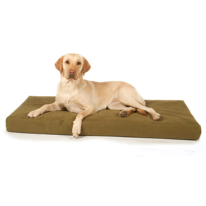 Big Dog Bed Company Active Recovery Orthopaedic Bed