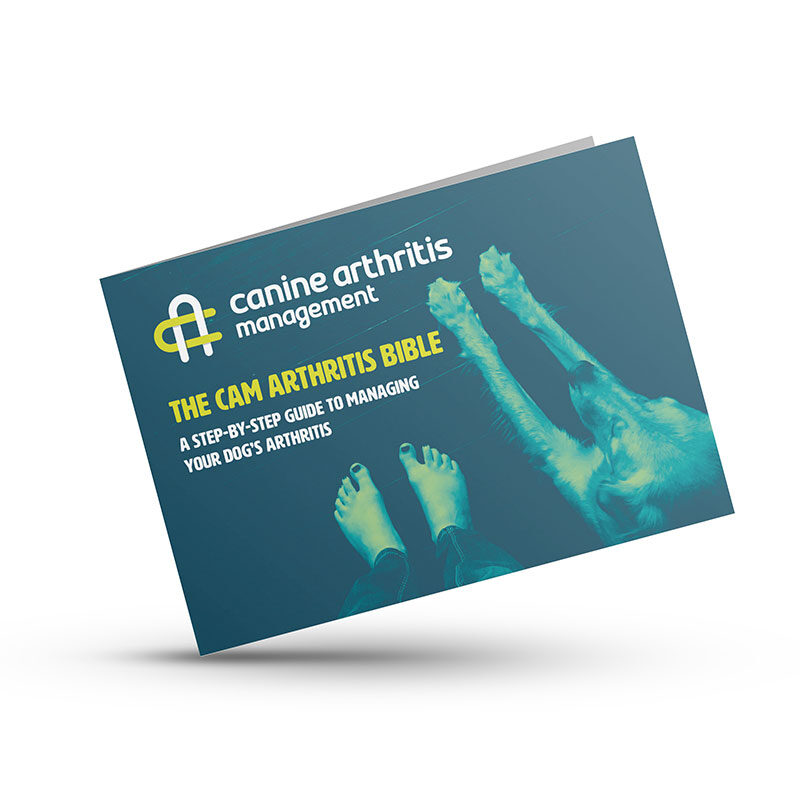 CAM Arthritis Bible